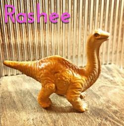 Rashee
